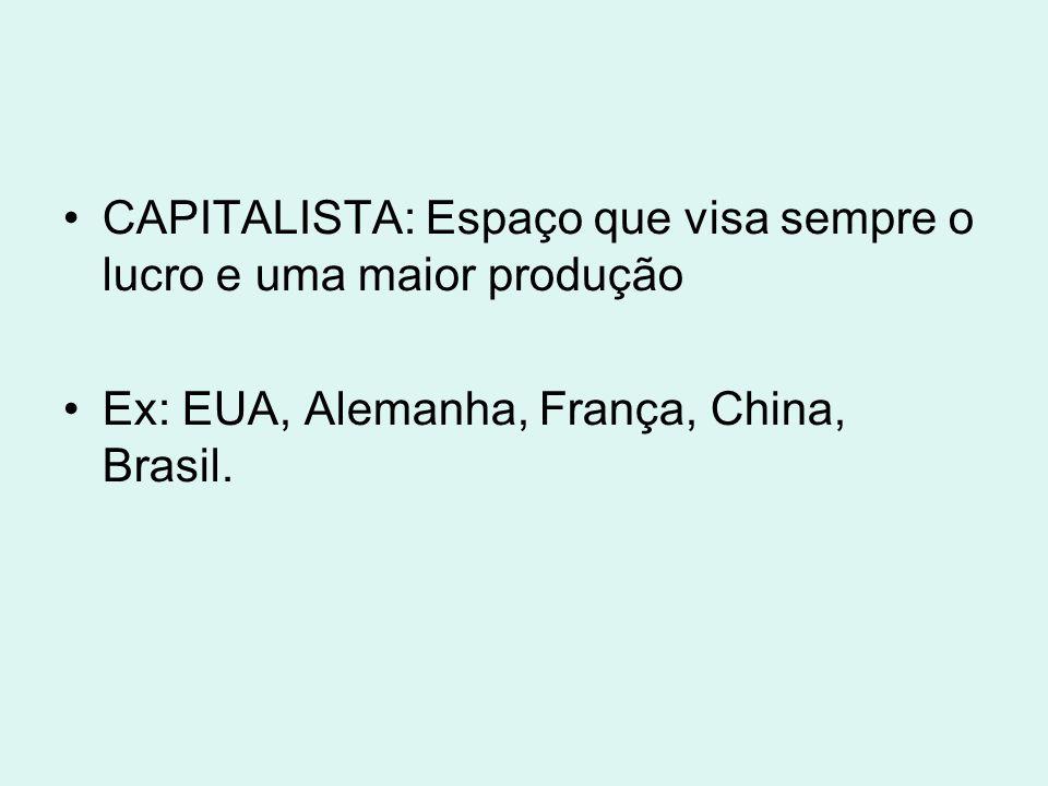 CAPITALISTA: Espaço que visa sempre o lucro e uma maior produção Ex: EUA, Alemanha, França, China, Brasil.