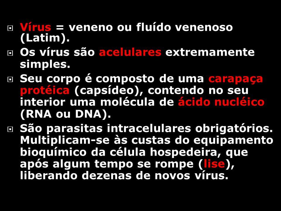 Vírus = veneno ou fluído venenoso (Latim).Os vírus são acelulares extremamente simples.