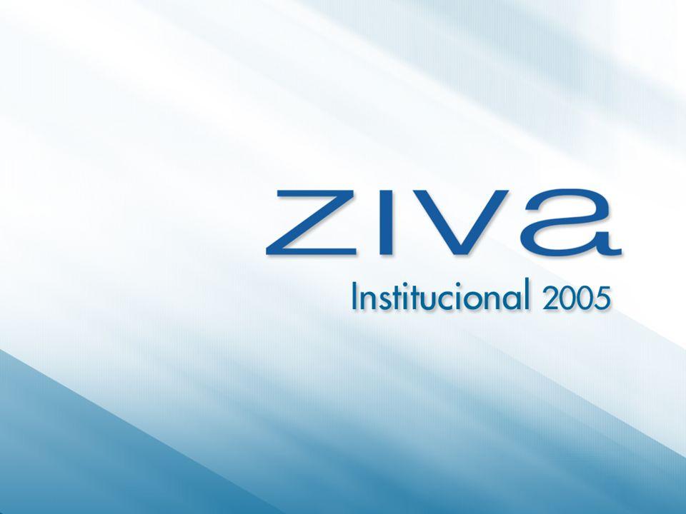 www.ziva.com.br12 Clientes