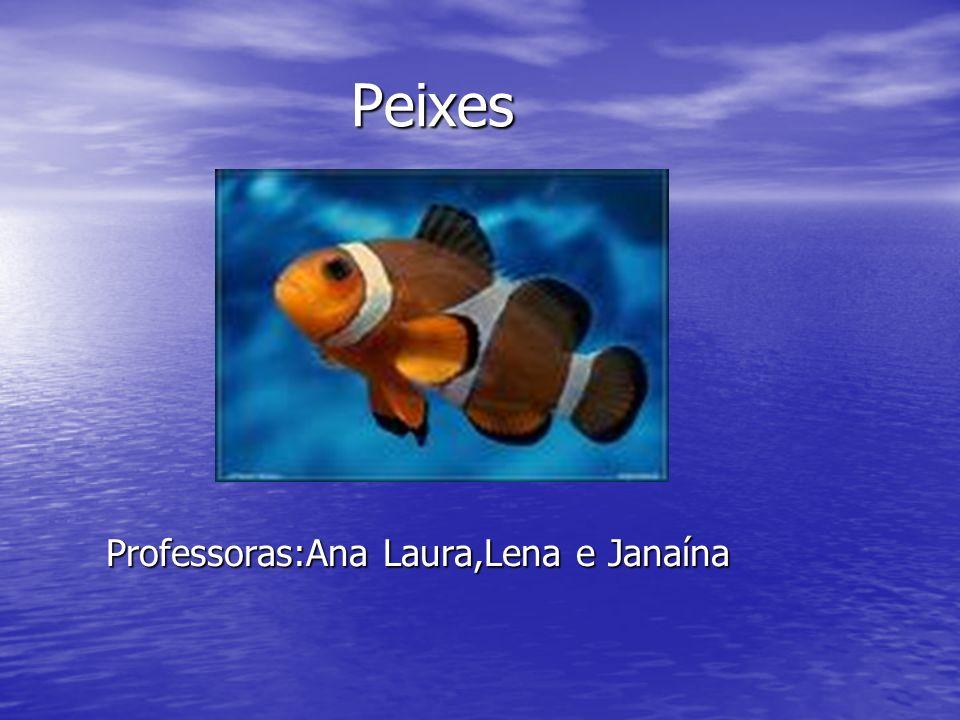 Peixes Peixes Professoras:Ana Laura,Lena e Janaína Professoras:Ana Laura,Lena e Janaína