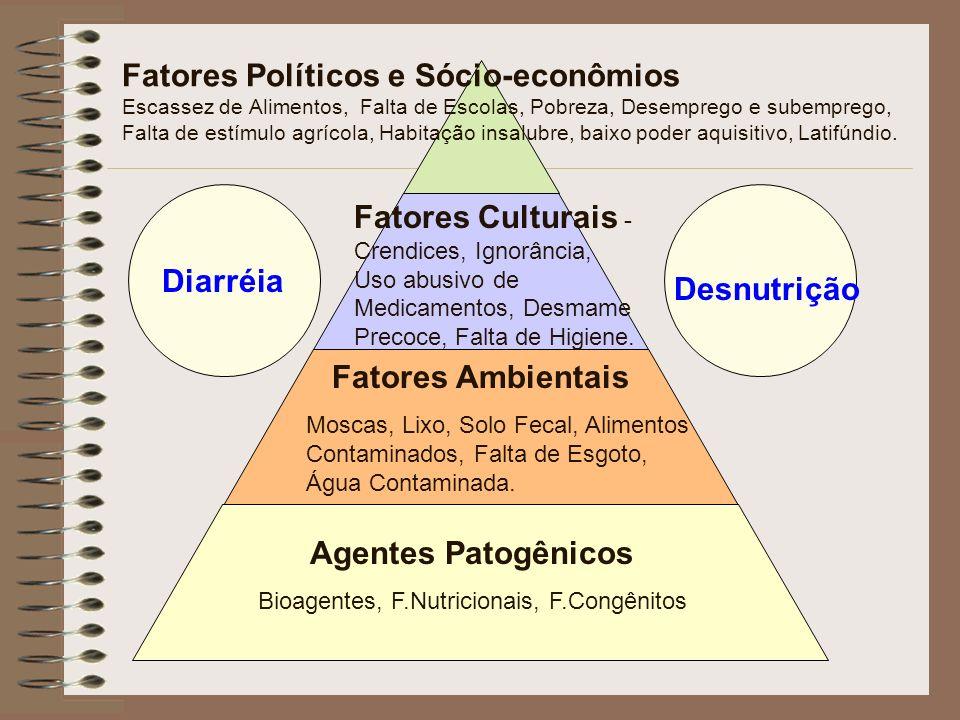 Diarréia Desnutrição Agentes Patogênicos Bioagentes, F.Nutricionais, F.Congênitos Fatores Ambientais Moscas, Lixo, Solo Fecal, Alimentos Contaminados,