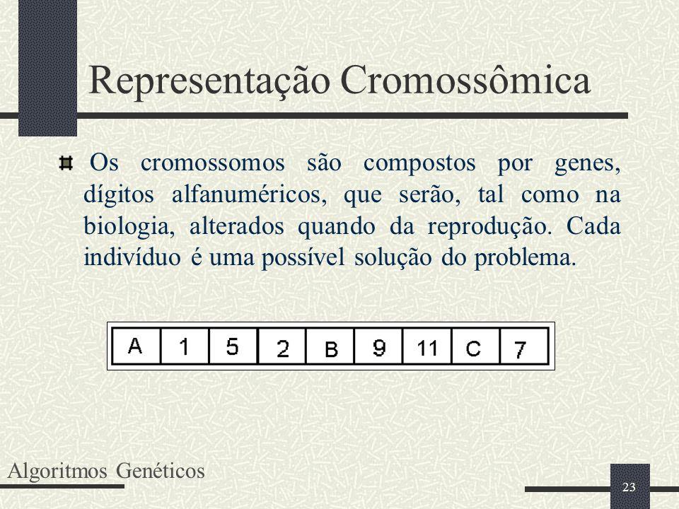23 Representação Cromossômica Os cromossomos são compostos por genes, dígitos alfanuméricos, que serão, tal como na biologia, alterados quando da repr