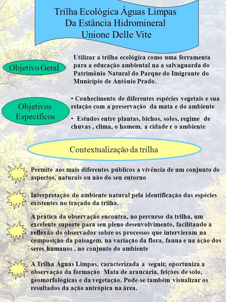Trilha Ecológica Águas Limpas Da Estância Hidromineral Unione Delle Vite Objetivo Geral Utilizar a trilha ecológica como uma ferramenta para a educaçã