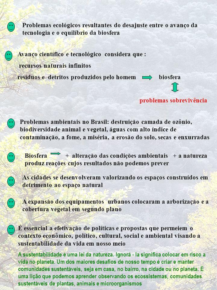 IMPORTÂNCIA ECOLÓGICA DAS FLORESTAS Código Florestal Brasileiro - 20 % da propriedade com floresta FAO - 25 % da propriedade, microbacia, Município, Estado com floresta Facilitar a infiltração da água das chuvas Regular a umidade da superfície do solo Controlar a erosão nos pontos críticos da propriedade e os assoreamentos Enriquecer o solo com matéria orgânica, de folhas e galhos decompostos Conservação do solo FLORESTAS Contexto social, Ambiental e Econômico