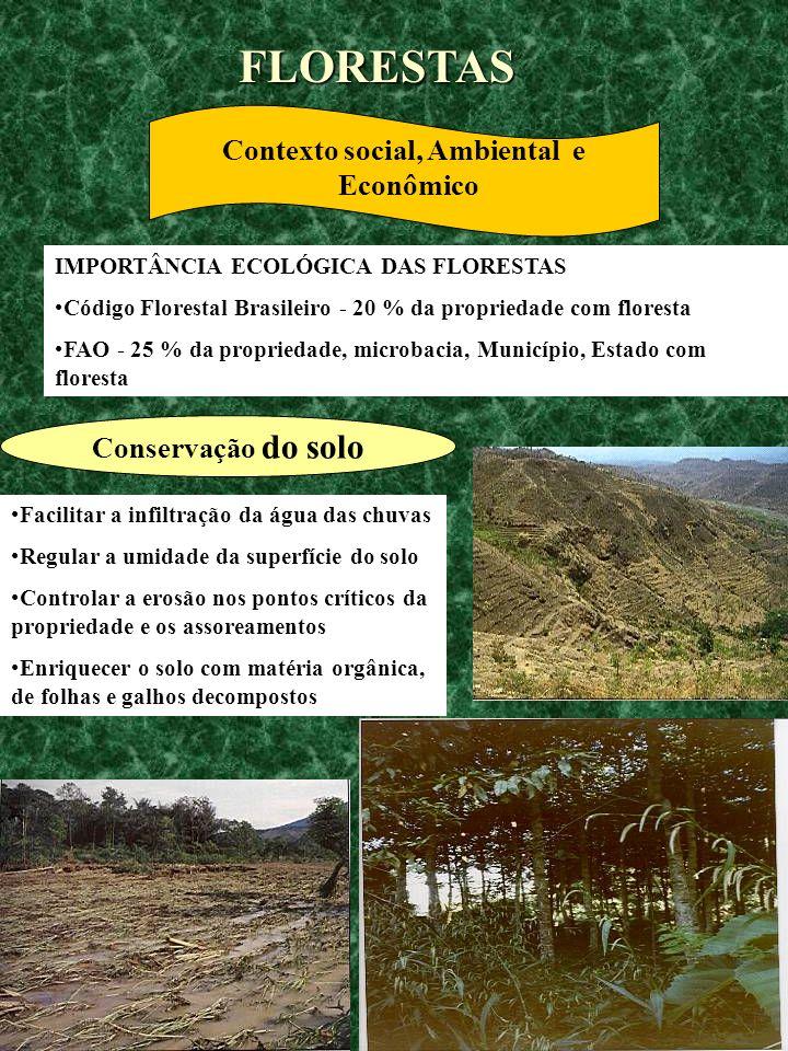 IMPORTÂNCIA ECOLÓGICA DAS FLORESTAS Código Florestal Brasileiro - 20 % da propriedade com floresta FAO - 25 % da propriedade, microbacia, Município, E