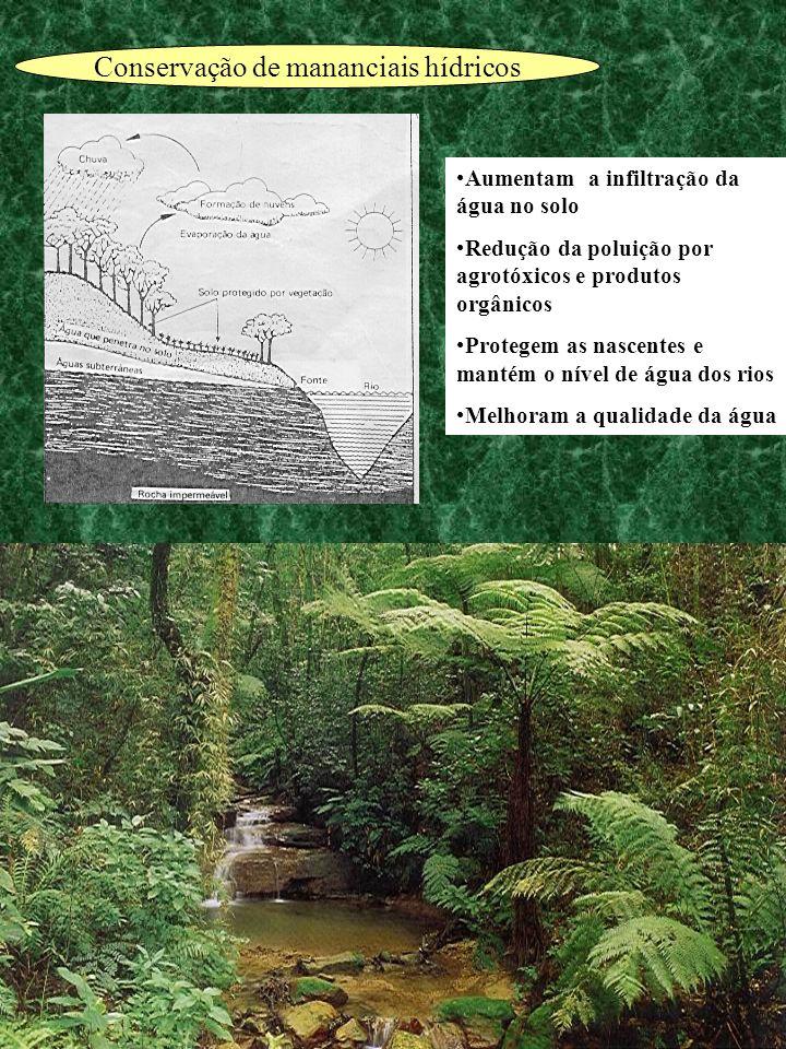 Aumentam a infiltração da água no solo Redução da poluição por agrotóxicos e produtos orgânicos Protegem as nascentes e mantém o nível de água dos rio