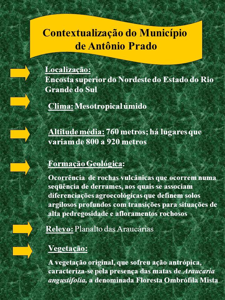 Contextualização do Município de Antônio Prado Localização: Encosta superior do Nordeste do Estado do Rio Grande do Sul Clima: Mesotropical úmido Alti