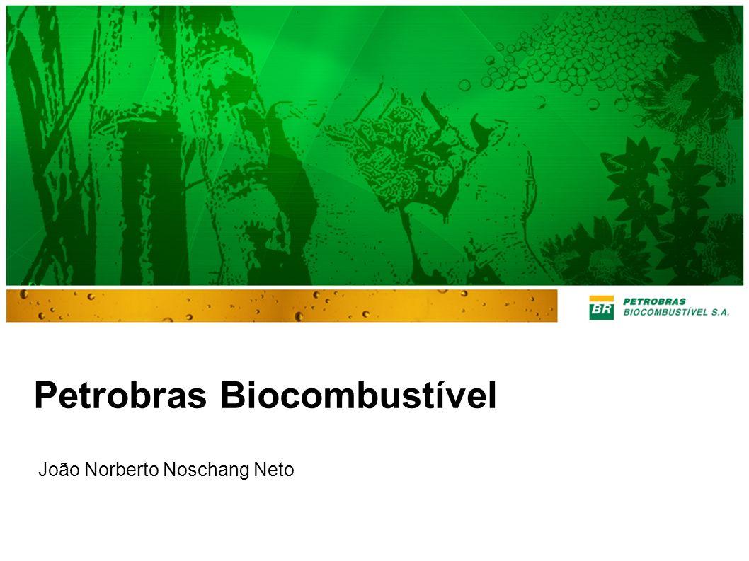 Petrobras Biocombustível João Norberto Noschang Neto