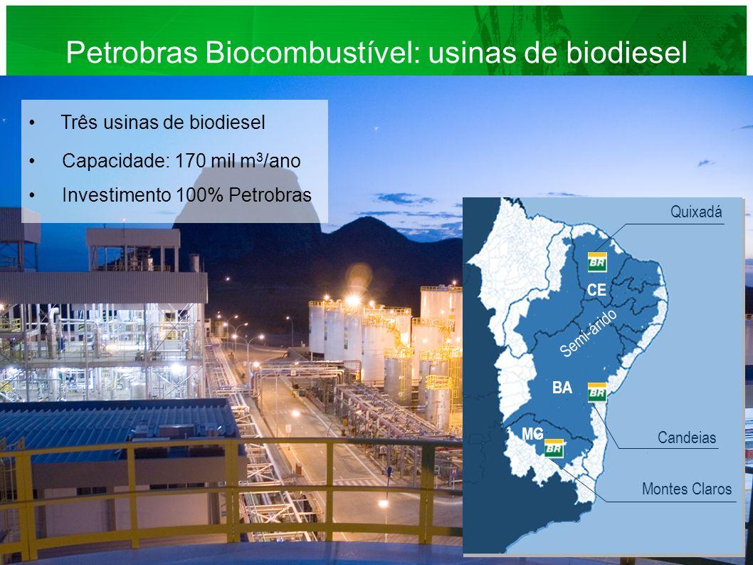Três usinas de biodiesel Capacidade: 170 mil m 3 /ano Investimento 100% Petrobras Petrobras Biocombustível: usinas de biodiesel BA MG Montes Claros Qu
