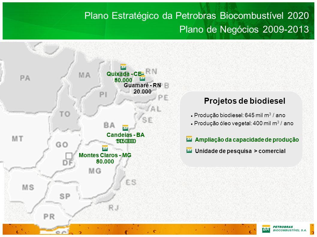 Projetos de biodiesel Produção biodiesel: 645 mil m 3 / ano Produção óleo vegetal: 400 mil m 3 / ano Plano Estratégico da Petrobras Biocombustível 202