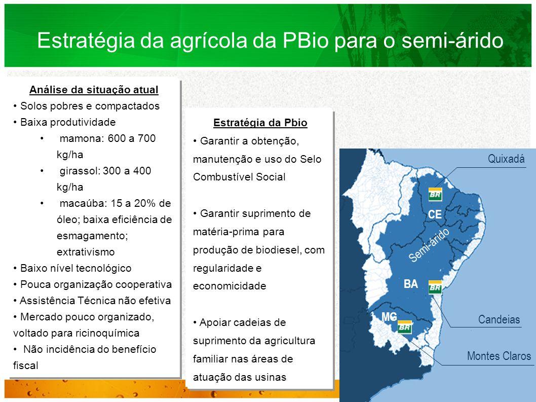 Estratégia da Pbio Garantir a obtenção, manutenção e uso do Selo Combustível Social Garantir suprimento de matéria-prima para produção de biodiesel, c