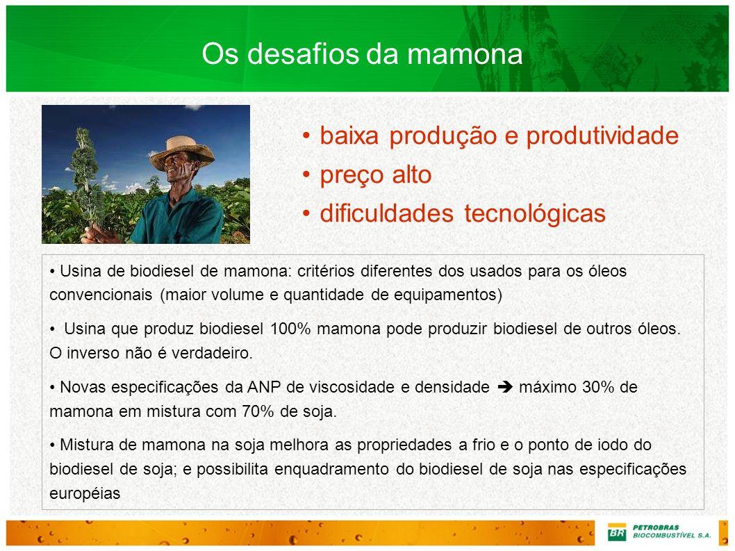 Usina de biodiesel de mamona: critérios diferentes dos usados para os óleos convencionais (maior volume e quantidade de equipamentos) Usina que produz