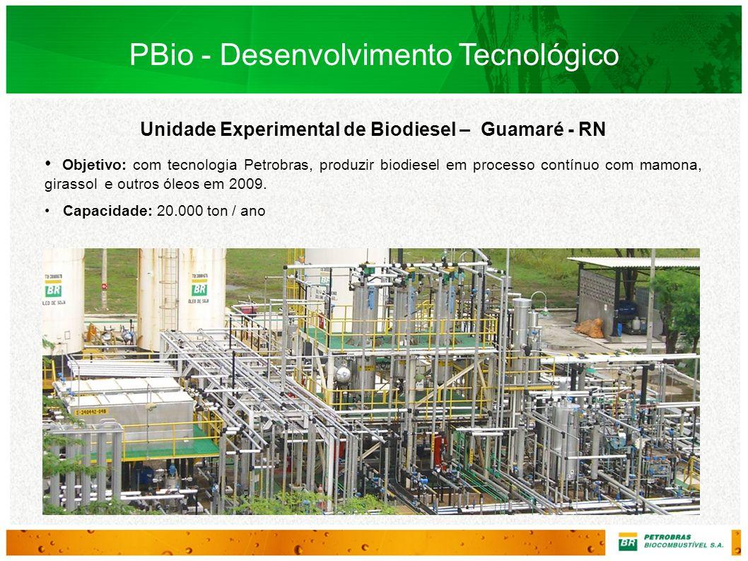 Unidade Experimental de Biodiesel – Guamaré - RN Objetivo: com tecnologia Petrobras, produzir biodiesel em processo contínuo com mamona, girassol e ou