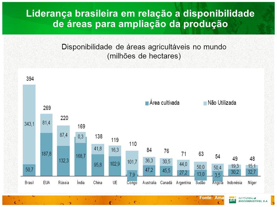 Fonte: Amaral - PensaUSP e FAO Liderança brasileira em relação a disponibilidade de áreas para ampliação da produção Disponibilidade de áreas agricult