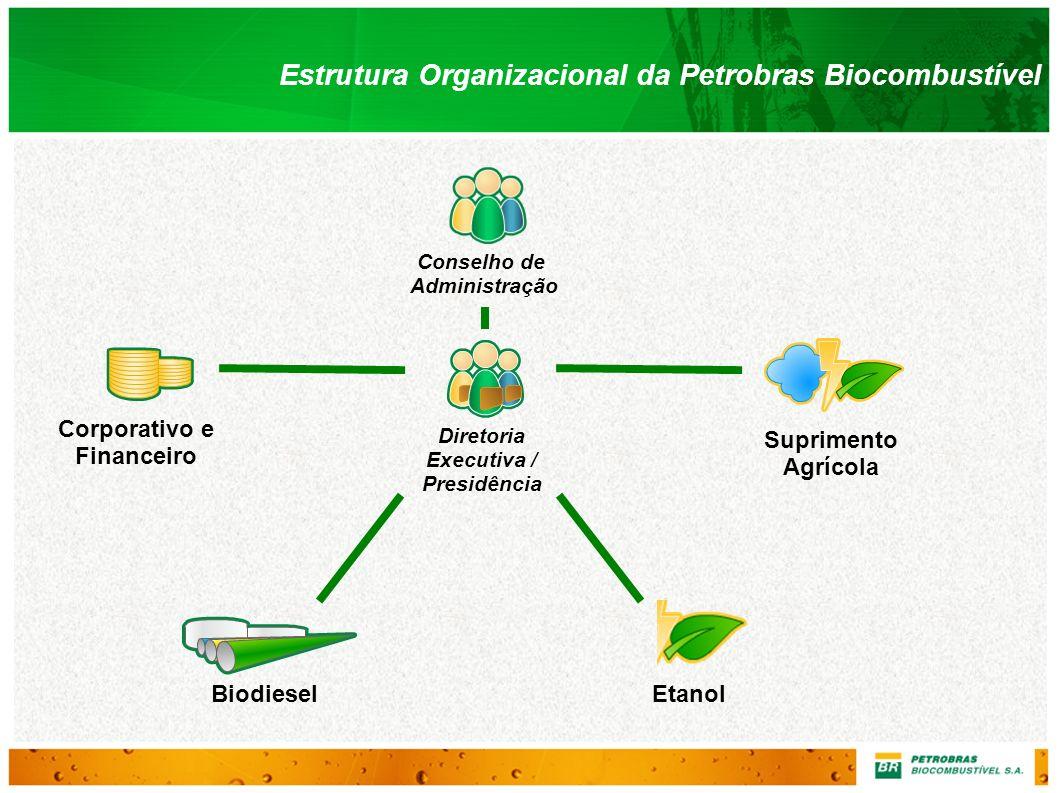 Conselho de Administração Estrutura Organizacional da Petrobras Biocombustível BiodieselEtanol Diretoria Executiva / Presidência Corporativo e Finance