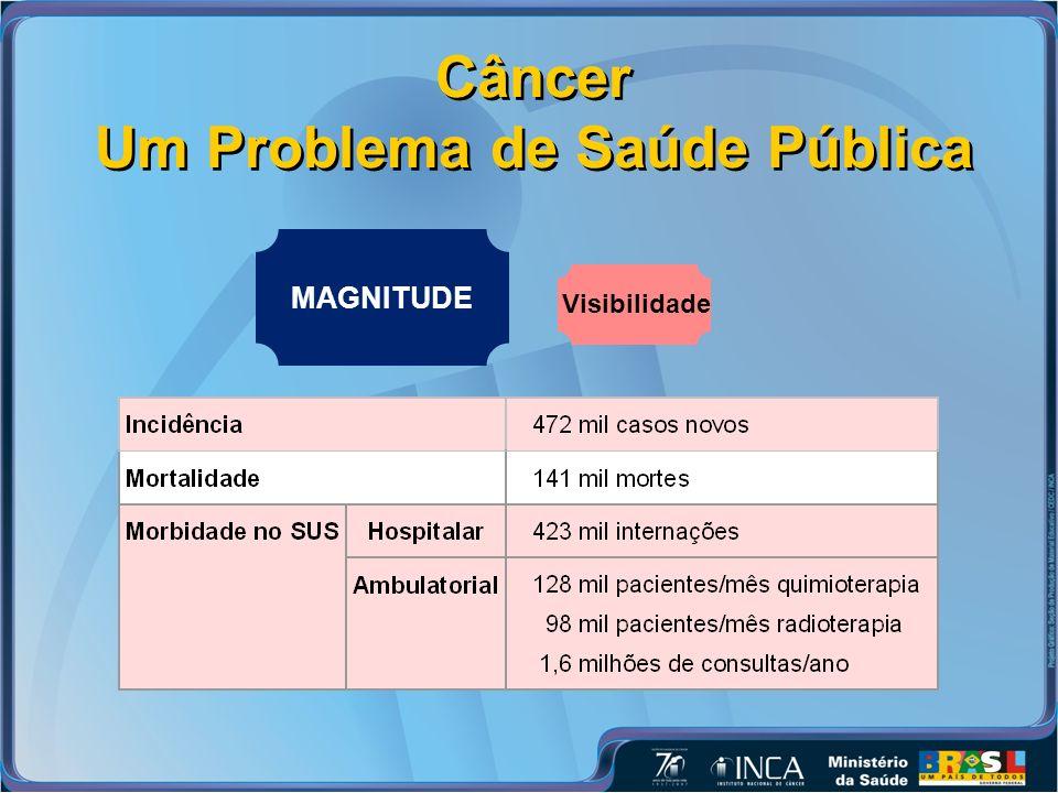 Câncer Um Problema de Saúde Pública MAGNITUDE Visibilidade