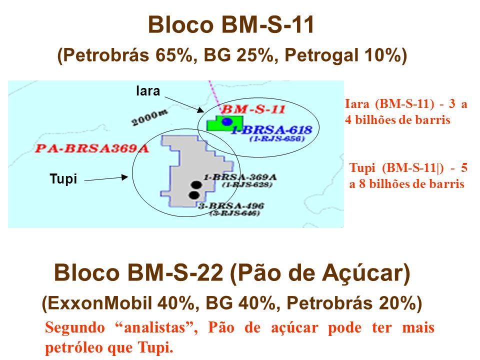 Iara Tupi Iara (BM-S-11) - 3 a 4 bilhões de barris Tupi (BM-S-11|) - 5 a 8 bilhões de barris Bloco BM-S-11 (Petrobrás 65%, BG 25%, Petrogal 10%) Bloco