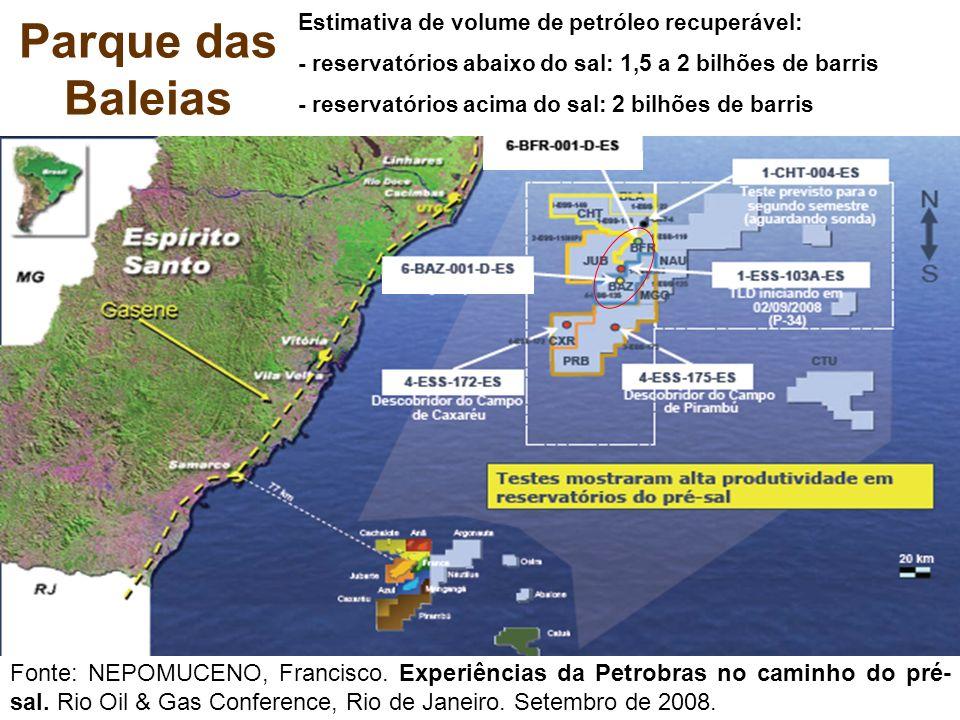 Parque das Baleias Fonte: NEPOMUCENO, Francisco. Experiências da Petrobras no caminho do pré- sal. Rio Oil & Gas Conference, Rio de Janeiro. Setembro