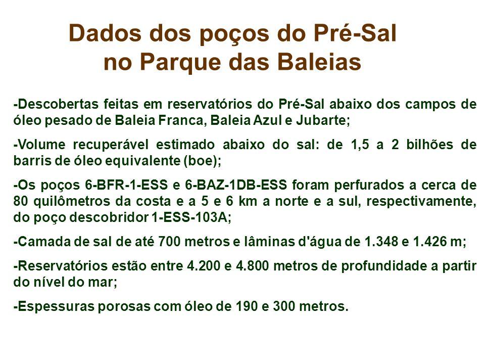Dados dos poços do Pré-Sal no Parque das Baleias -Descobertas feitas em reservatórios do Pré-Sal abaixo dos campos de óleo pesado de Baleia Franca, Ba