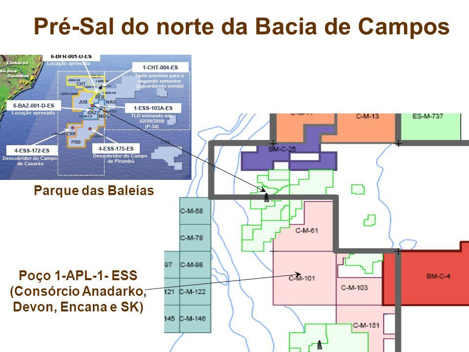 Pré-Sal do norte da Bacia de Campos Poço 1-APL-1- ESS (Consórcio Anadarko, Devon, Encana e SK) Parque das Baleias