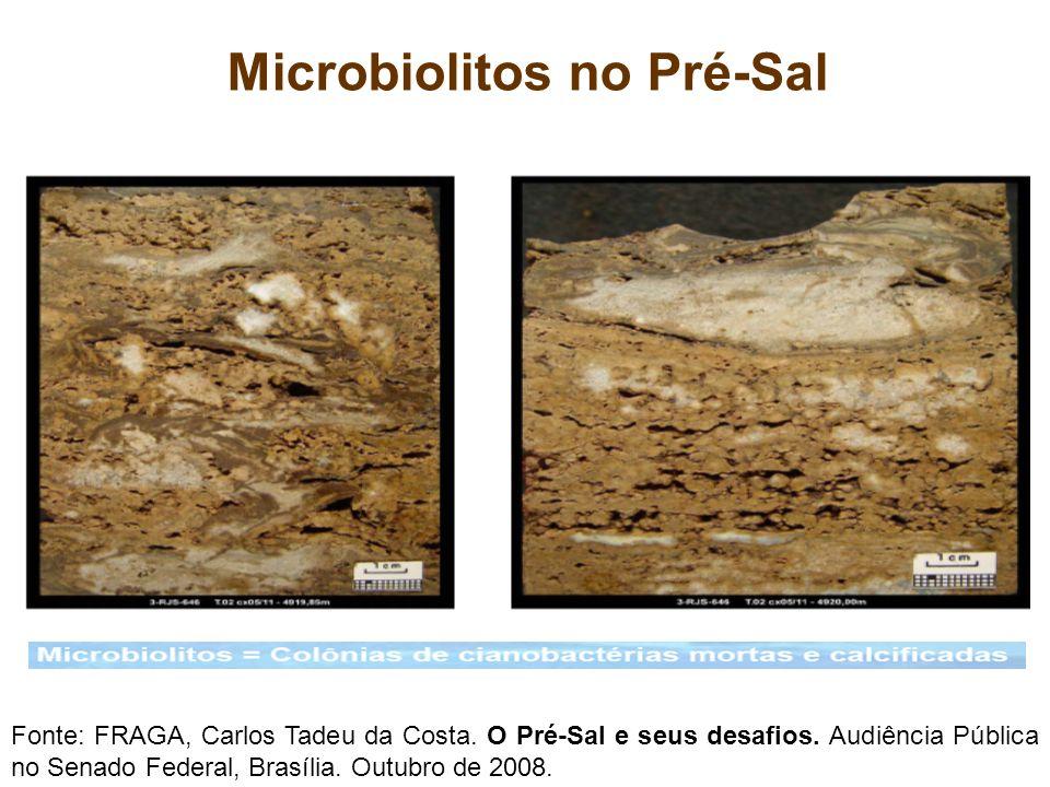 Microbiolitos no Pré-Sal Fonte: FRAGA, Carlos Tadeu da Costa. O Pré-Sal e seus desafios. Audiência Pública no Senado Federal, Brasília. Outubro de 200