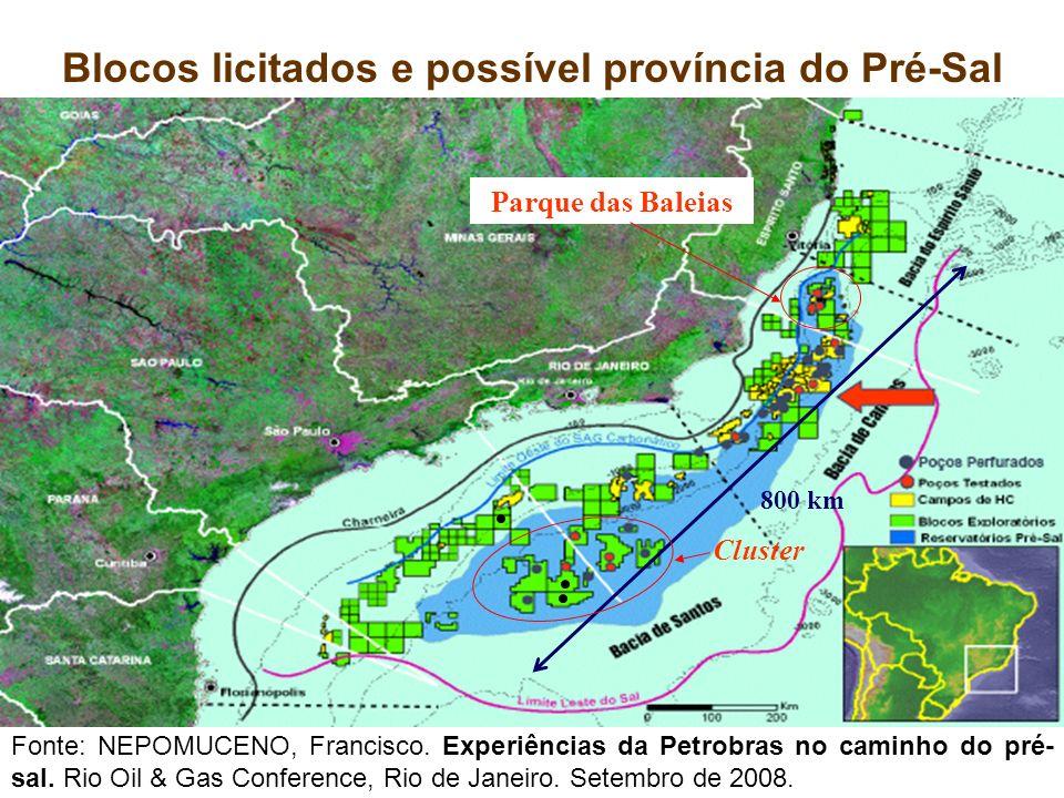 Blocos licitados e possível província do Pré-Sal 800 km Cluster Fonte: NEPOMUCENO, Francisco. Experiências da Petrobras no caminho do pré- sal. Rio Oi
