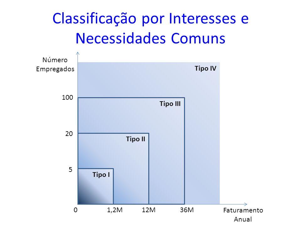 Classificação por Interesses e Necessidades Comuns Tipo IV Tipo III Tipo II Tipo I Faturamento Anual Número Empregados 100 20 5 0 1,2M 12M 36M