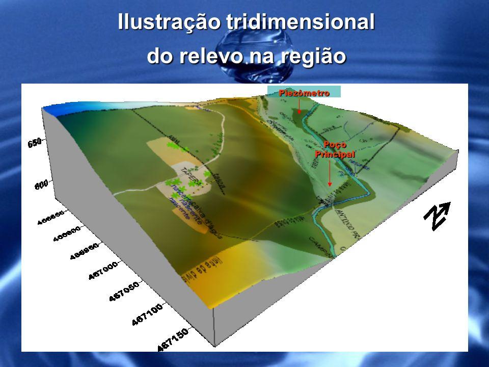Localização dos poços dentro da micro bacia de captação Poço produtivo Piezômetro