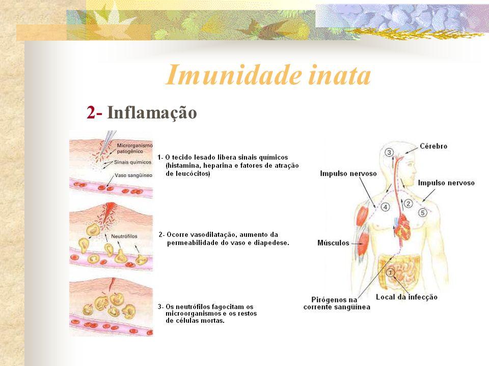 Imunidade inata 2- Inflamação
