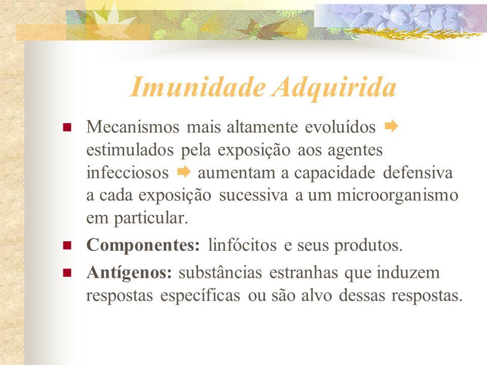 Imunidade Adquirida Mecanismos mais altamente evoluídos estimulados pela exposição aos agentes infecciosos aumentam a capacidade defensiva a cada expo