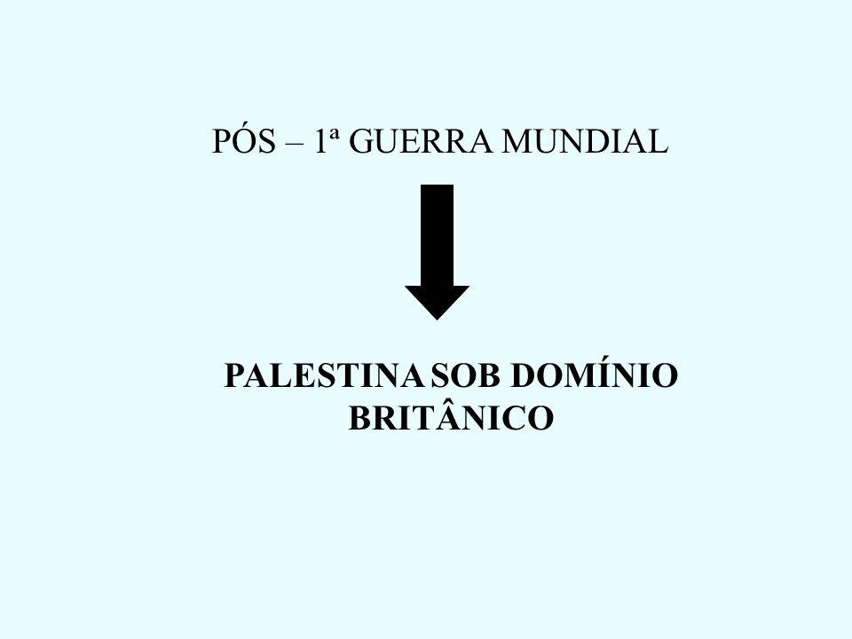 PÓS – 1ª GUERRA MUNDIAL PALESTINA SOB DOMÍNIO BRITÂNICO