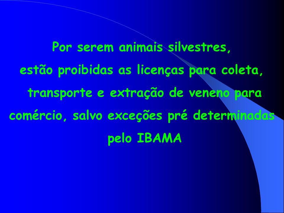 Por serem animais silvestres, estão proibidas as licenças para coleta, transporte e extração de veneno para comércio, salvo exceções pré determinadas