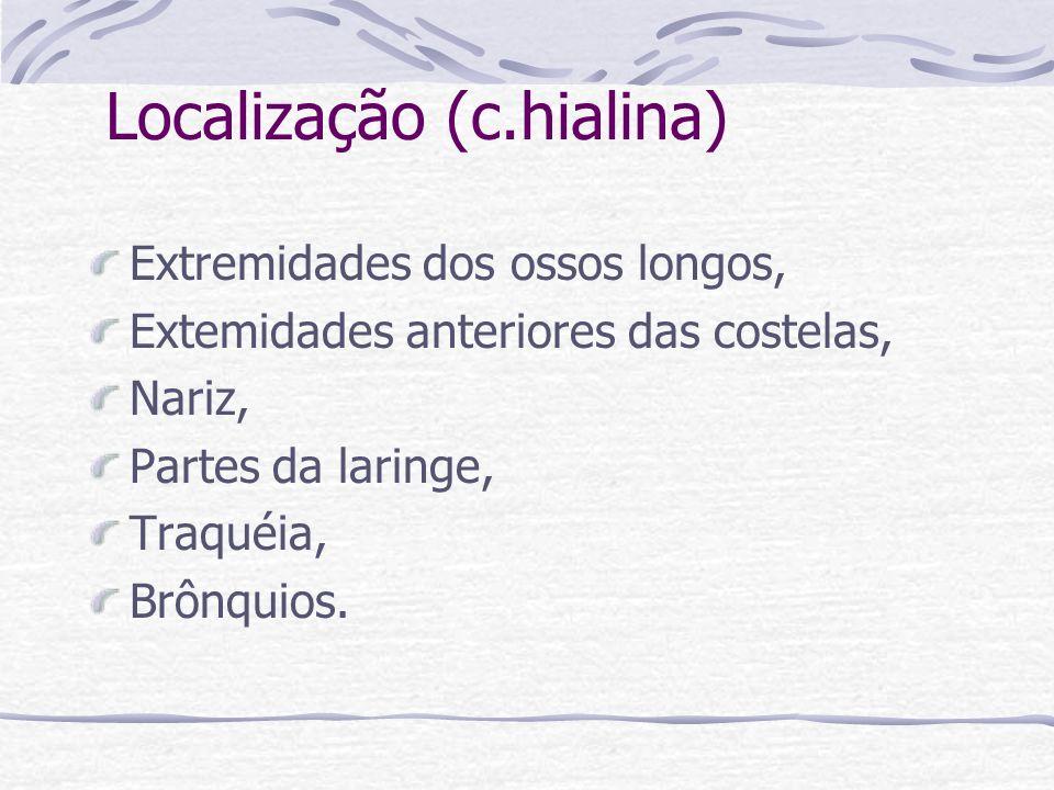 Localização (c.hialina) Extremidades dos ossos longos, Extemidades anteriores das costelas, Nariz, Partes da laringe, Traquéia, Brônquios.