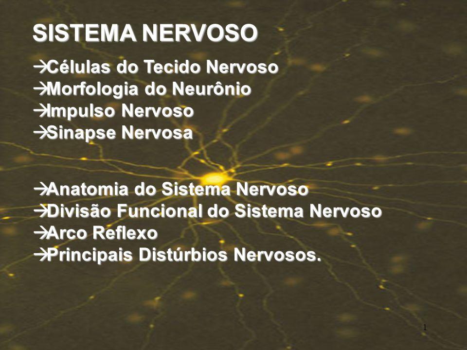 SISTEMA NERVOSO Células do Tecido Nervoso Células do Tecido Nervoso Morfologia do Neurônio Morfologia do Neurônio Impulso Nervoso Impulso Nervoso Sinapse Nervosa Sinapse Nervosa Anatomia do Sistema Nervoso Anatomia do Sistema Nervoso Divisão Funcional do Sistema Nervoso Divisão Funcional do Sistema Nervoso Arco Reflexo Arco Reflexo Principais Distúrbios Nervosos.