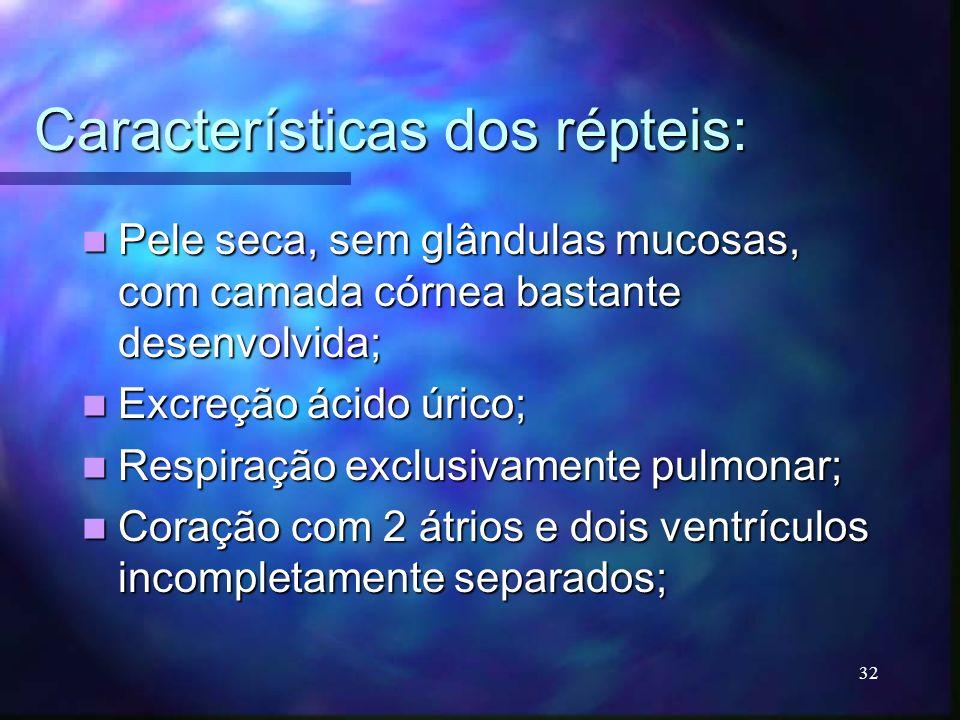 Características dos répteis: Pele seca, sem glândulas mucosas, com camada córnea bastante desenvolvida; Pele seca, sem glândulas mucosas, com camada c