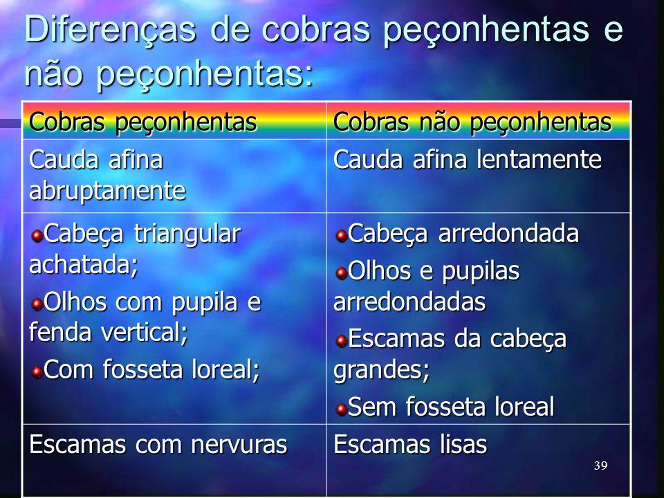 Diferenças de cobras peçonhentas e não peçonhentas: Cobras peçonhentas Cobras não peçonhentas Cauda afina abruptamente Cauda afina lentamente Cabeça t