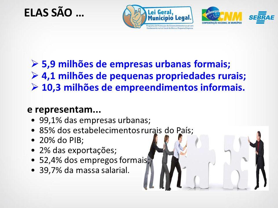 5,9 milhões de empresas urbanas formais; 4,1 milhões de pequenas propriedades rurais; 10,3 milhões de empreendimentos informais.