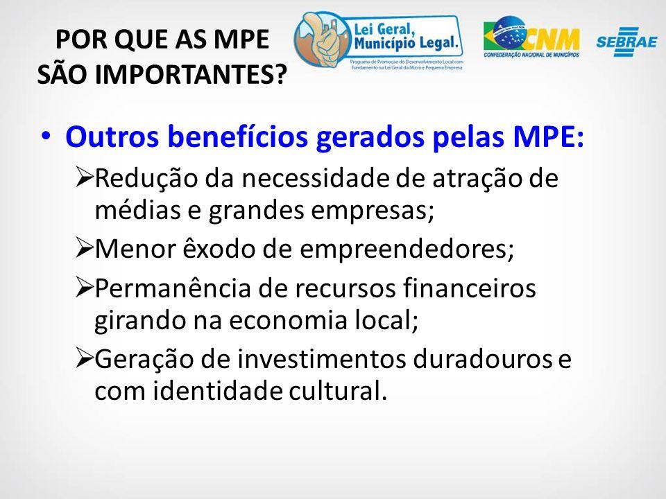 Outros benefícios gerados pelas MPE: Redução da necessidade de atração de médias e grandes empresas; Menor êxodo de empreendedores; Permanência de recursos financeiros girando na economia local; Geração de investimentos duradouros e com identidade cultural.