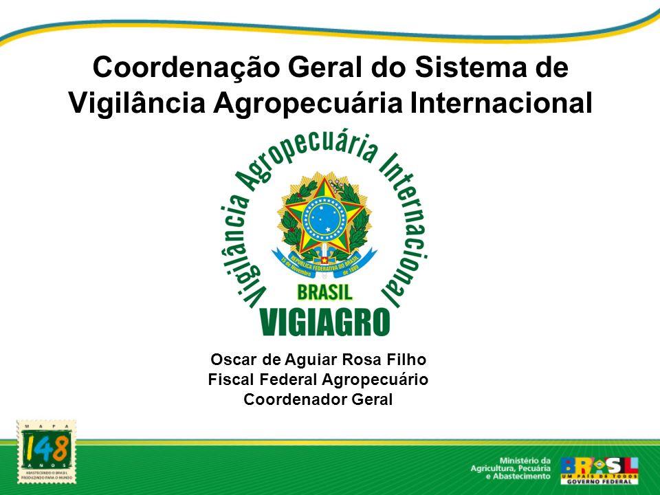 Objetivo Aprimorar a fiscalização das importações que contenham embalagem ou suportes de madeira AGILIDADE E SEGURANÇA