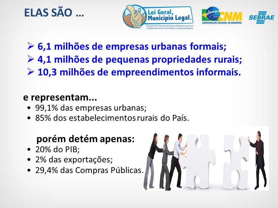 6,1 milhões de empresas urbanas formais; 4,1 milhões de pequenas propriedades rurais; 10,3 milhões de empreendimentos informais.