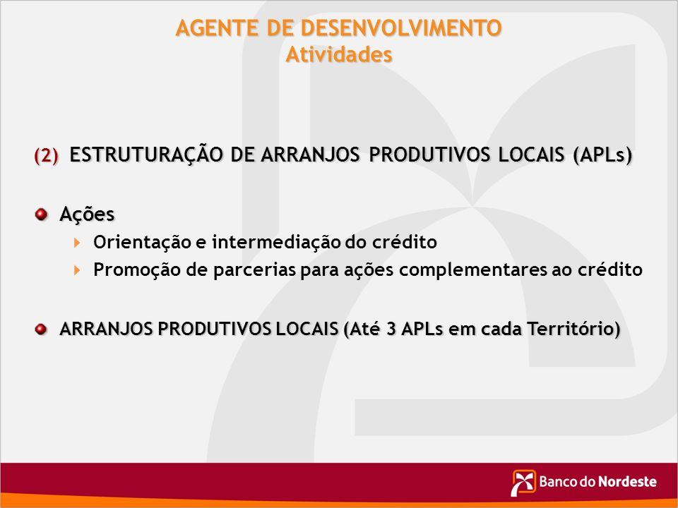 AGENTE DE DESENVOLVIMENTO Atividades (2) ESTRUTURAÇÃO DE ARRANJOS PRODUTIVOS LOCAIS (APLs) Ações Orientação e intermediação do crédito Promoção de par