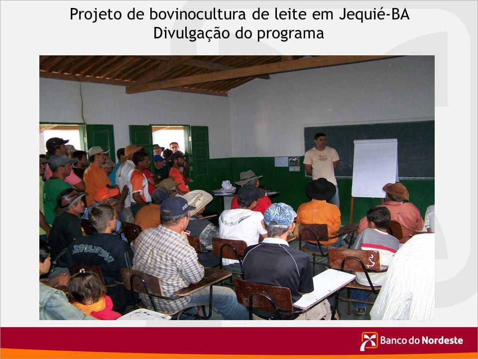Projeto de bovinocultura de leite em Jequié-BA Divulgação do programa