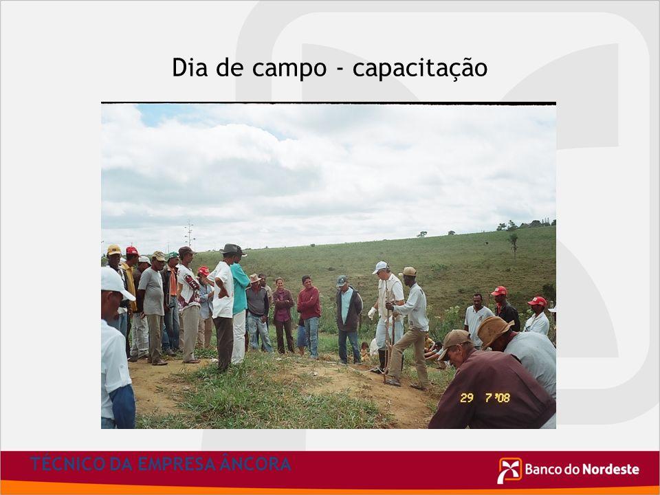 Dia de campo - capacitação TÉCNICO DA EMPRESA ÂNCORA