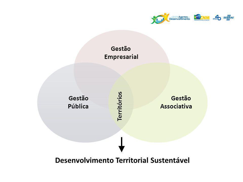 Gestão Pública Territórios Gestão Associativa Desenvolvimento Territorial Sustentável Gestão Empresarial