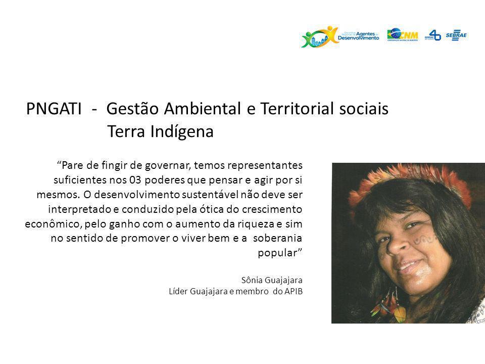PNGATI - Gestão Ambiental e Territorial sociais Terra Indígena Pare de fingir de governar, temos representantes suficientes nos 03 poderes que pensar