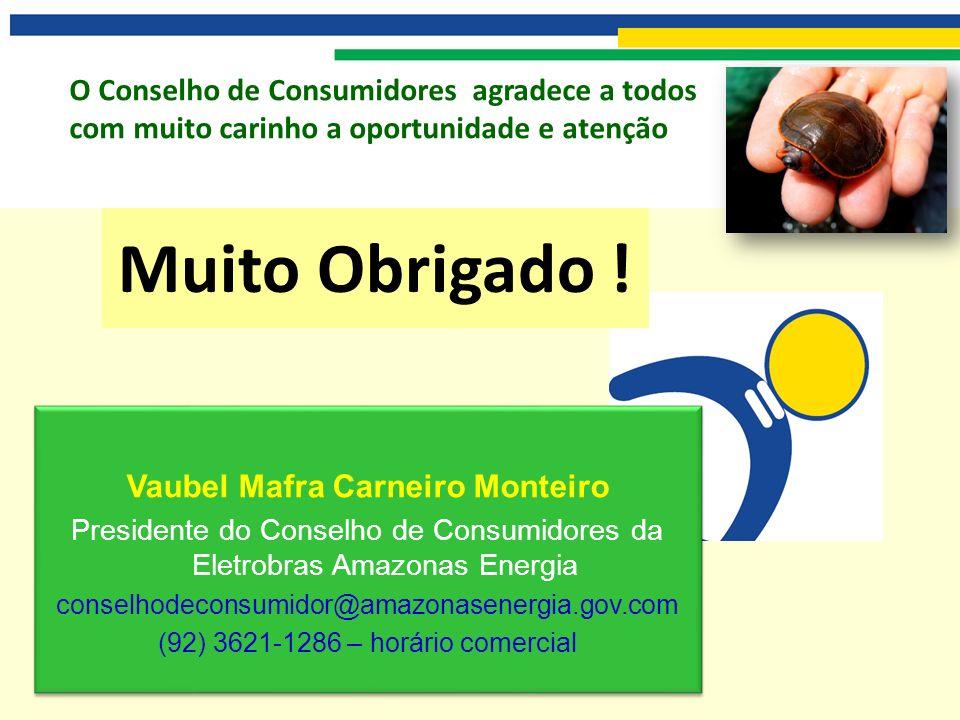 O Conselho de Consumidores agradece a todos com muito carinho a oportunidade e atenção Vaubel Mafra Carneiro Monteiro Presidente do Conselho de Consum