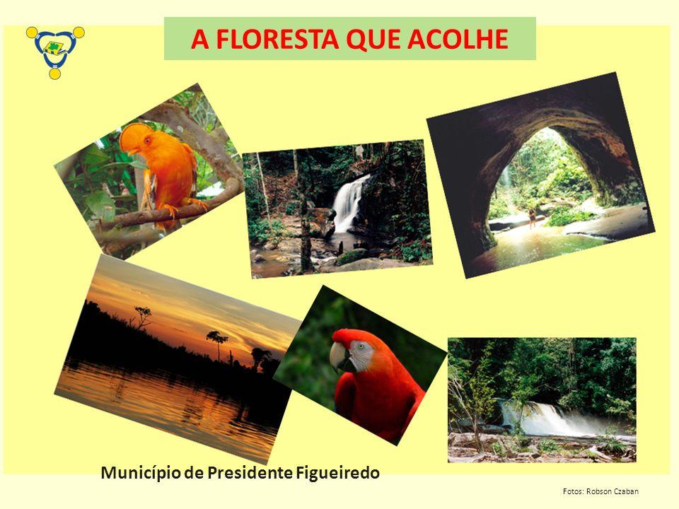 Município de Presidente Figueiredo Fotos: Robson Czaban A FLORESTA QUE ACOLHE