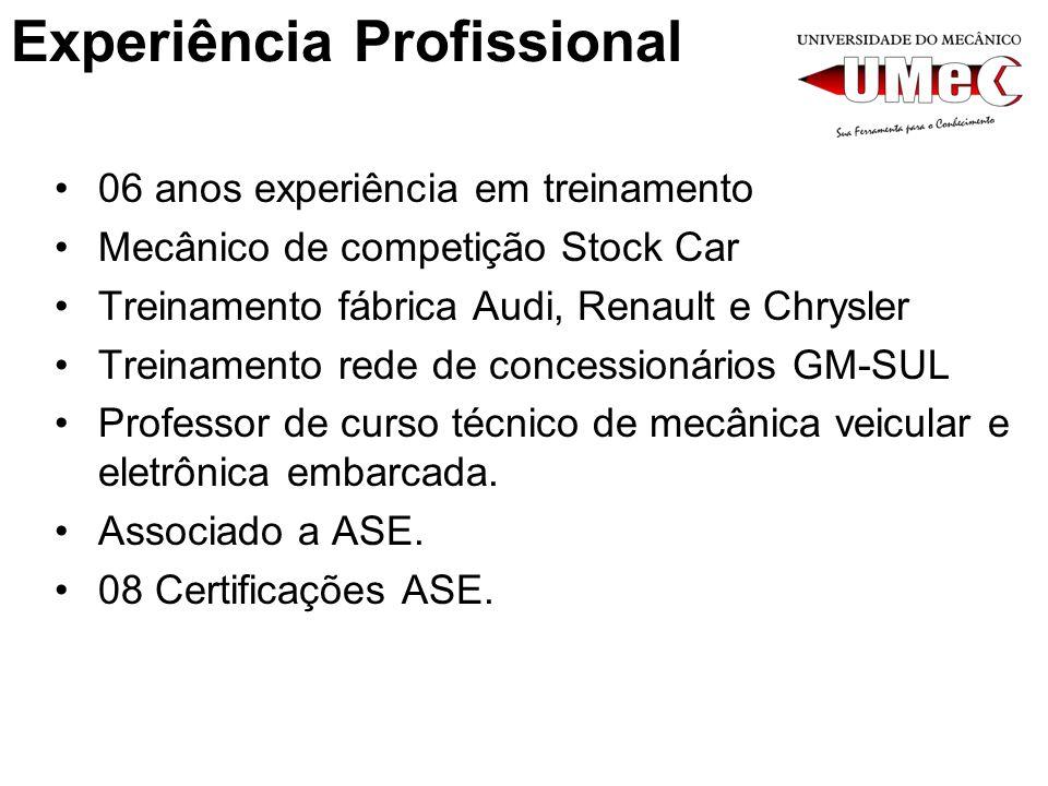 Experiência Profissional 06 anos experiência em treinamento Mecânico de competição Stock Car Treinamento fábrica Audi, Renault e Chrysler Treinamento