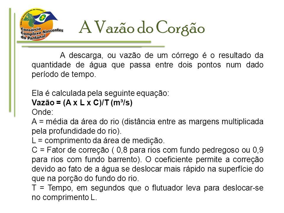 A Vazão do Corgão Exemplo de marcação de trecho de córrego para medição.