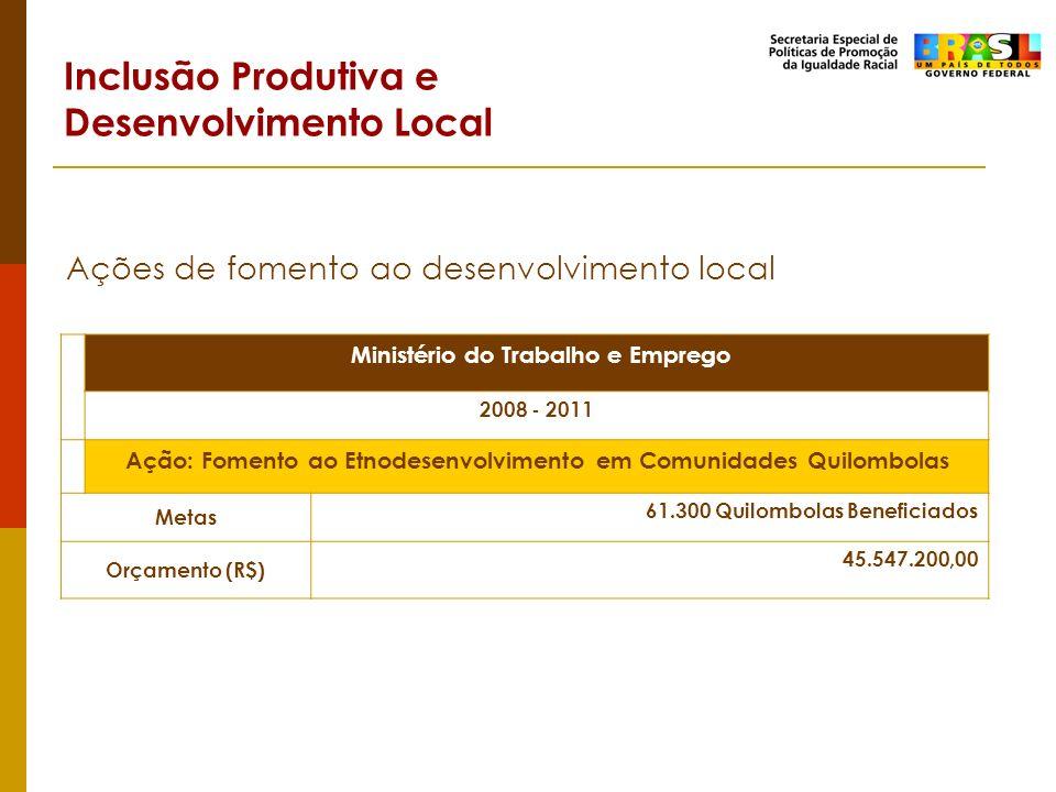 Inclusão Produtiva e Desenvolvimento Local Ações de fomento ao desenvolvimento local Ministério do Trabalho e Emprego 2008 - 2011 Ação: Fomento ao Etn